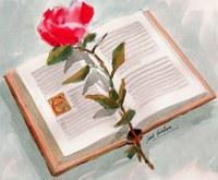 Concurs literari Sant Jordi 2020