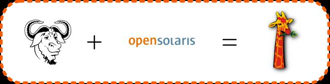 gnu_opensolaris_nexenta_650px.png