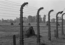 En record dels brigadistes internacionals, l'exili republicà i els camps d'extermini