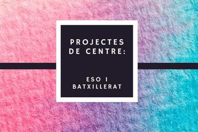 Projectes al Puig